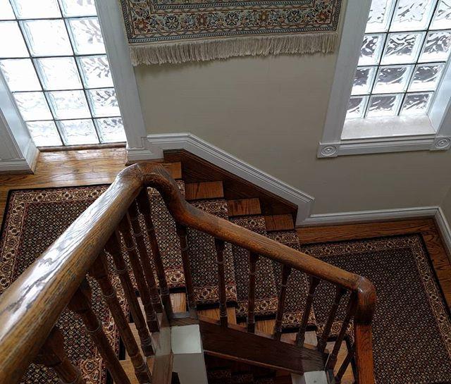 animal print carpet | Stairs First