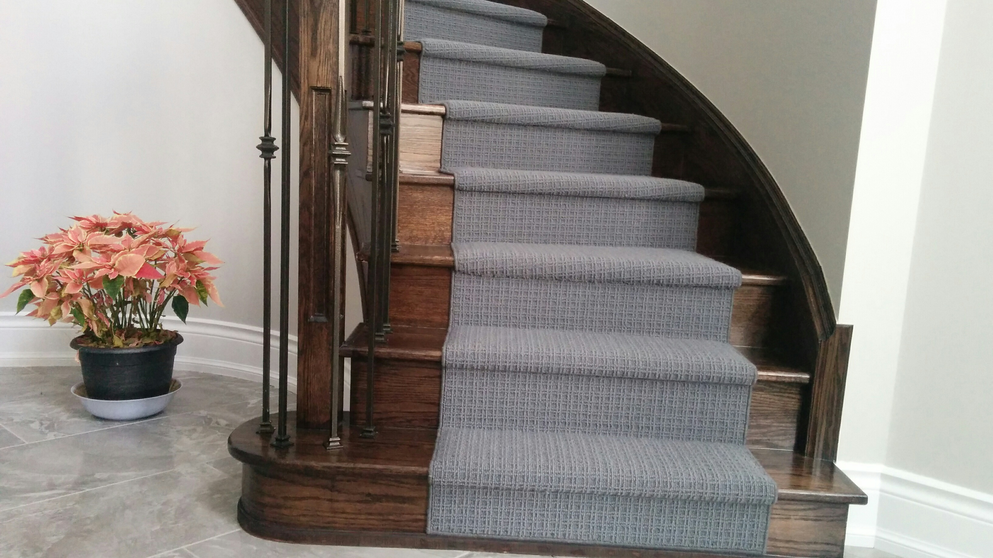 Cotemporary Carpet Runner for Stairs and hallway
