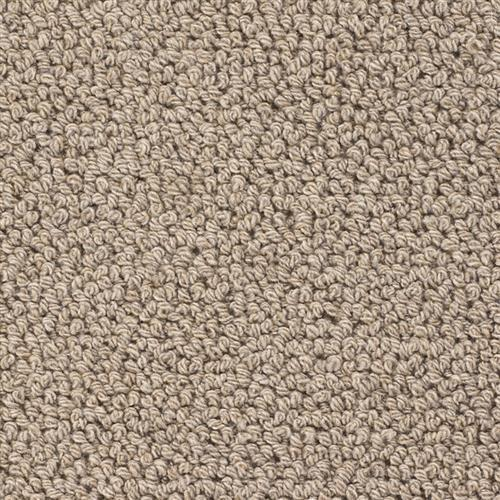 Wool Carpet taupe Colour